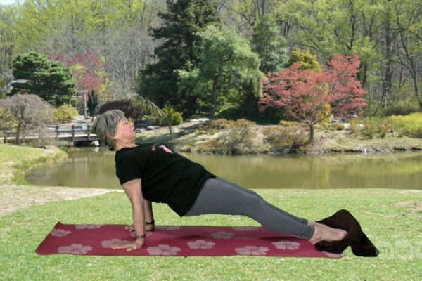 Yoga to Strengthen the Arms and Knees