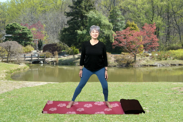 Learn some Back Strengtheners on Cherryblossom Yoga