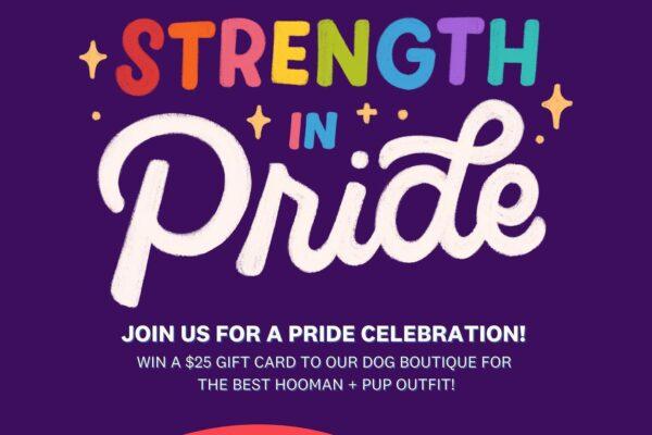 Puppy Pride PAWrade at Bark Social Bethesda